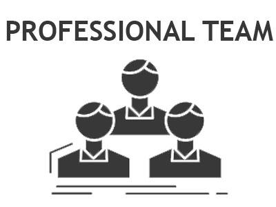 Professional Team